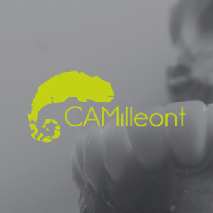 img home camilleont