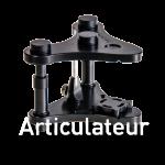 Articulateur